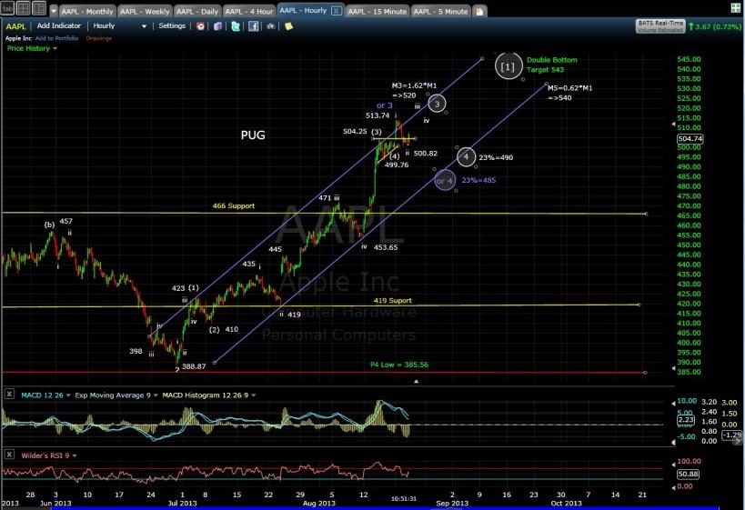 PUG AAPL 60-min chart MD 8-21-13