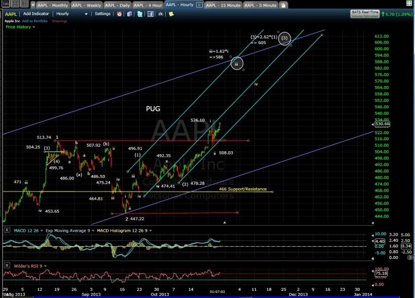 PUG AAPL 60-min Chart 10-24-13