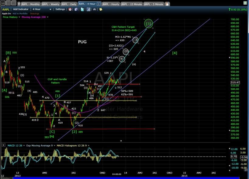 PUG AAPL 4-hr Chart EOD 11-19-13