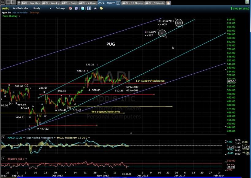 PUG AAPL 60-min Chart EOD 11-19-13