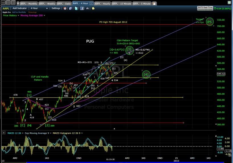 PUG AAPL 4-hr chart 1-6-14