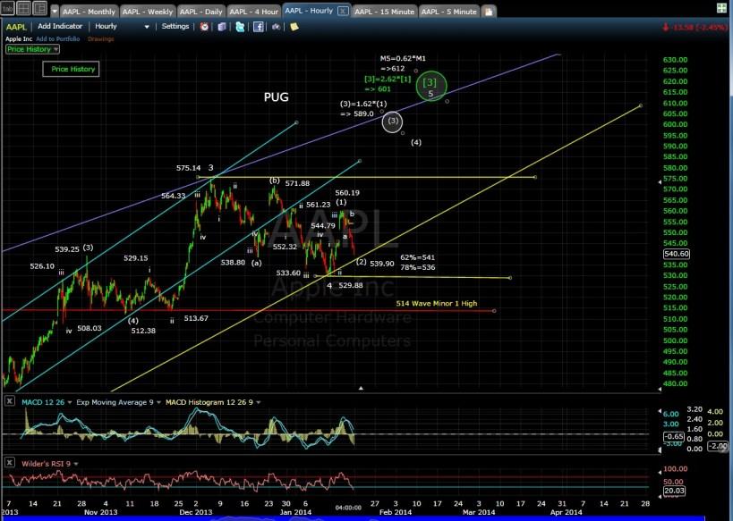 PUG AAPL 60-min chart EOD 1-17-14
