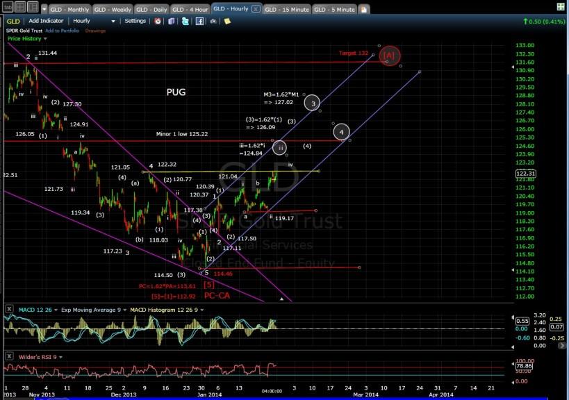 PUG GLD 60-min chart EOD 1-24-14