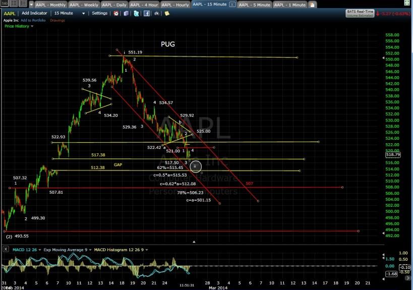PUG AAPL 15-min chart MD 2-26-14