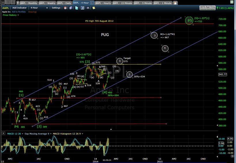 PUG AAPL 4-hr chart MD 2-13-14