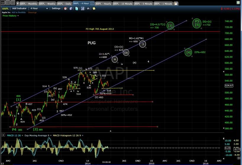 PUG AAPL 4-hr chart EOD 3-14-14