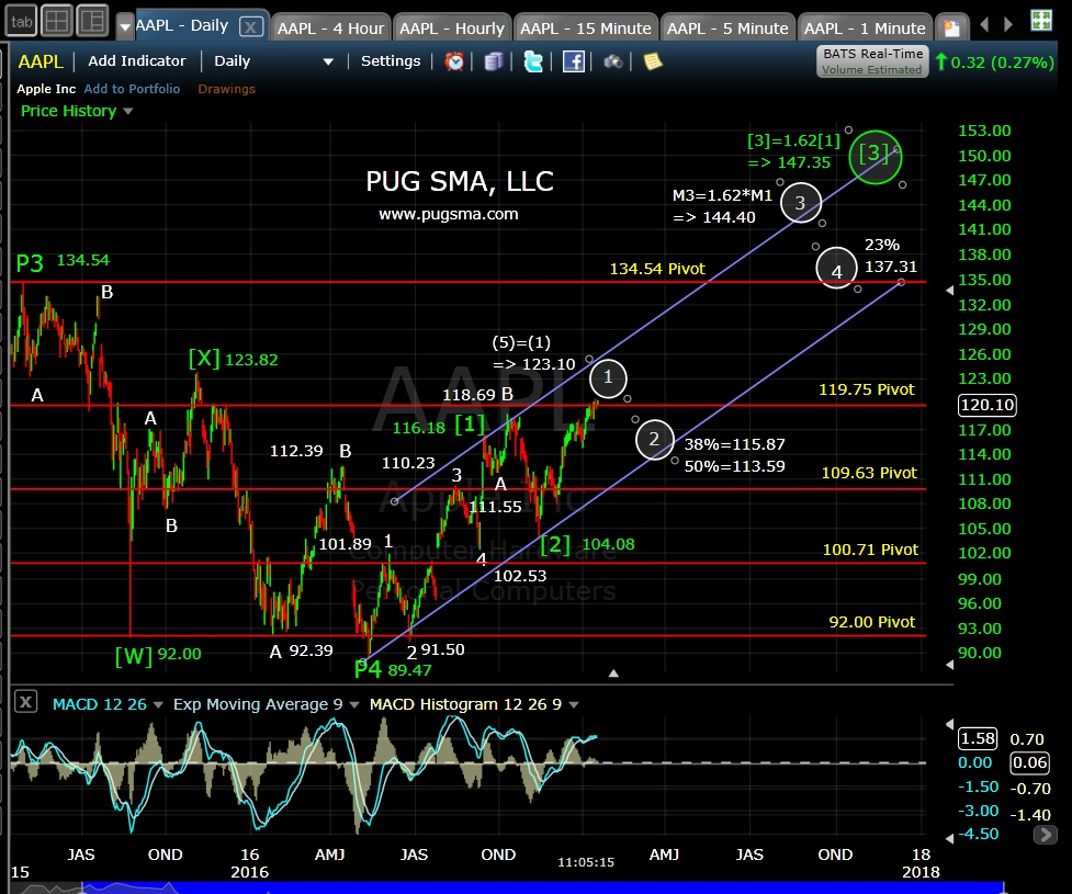 pug-aapl-daily-1-20-17