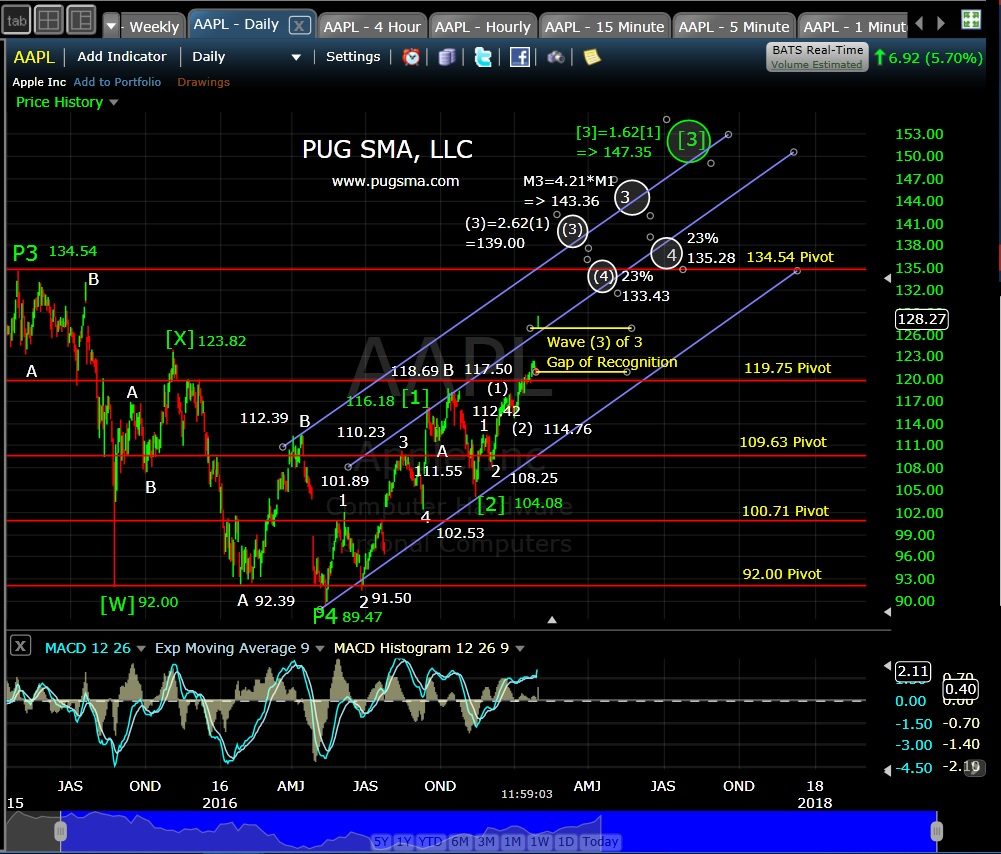 pug-aapl-daily-2-1-17