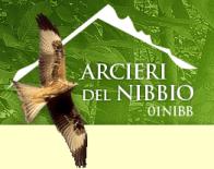logo_01NIBB