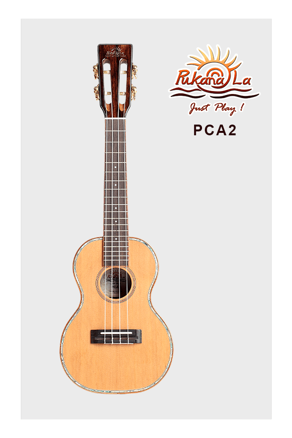 PCA2-01