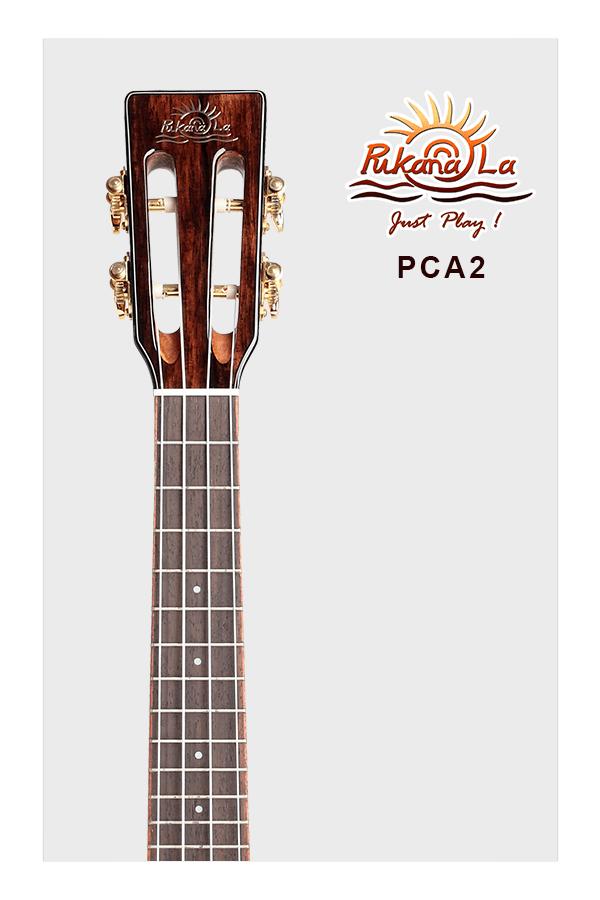 PCA2-05