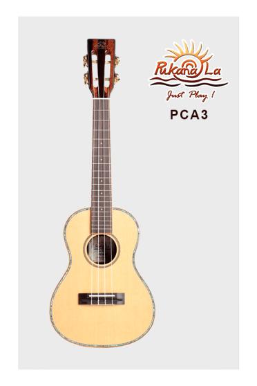 PCA3-01