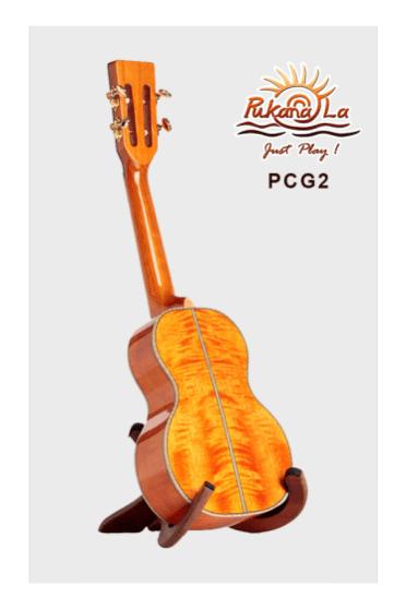PCG2-04