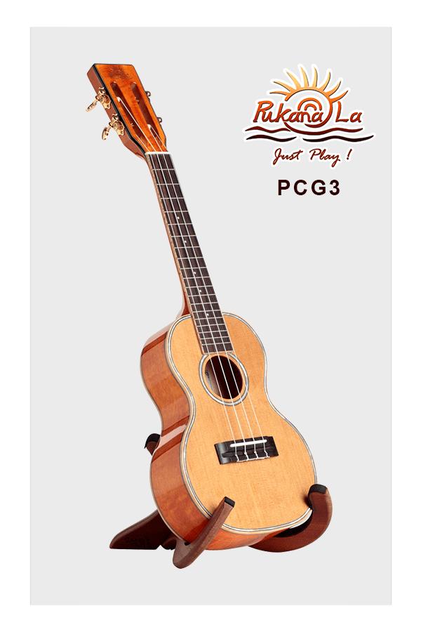 PCG3-03