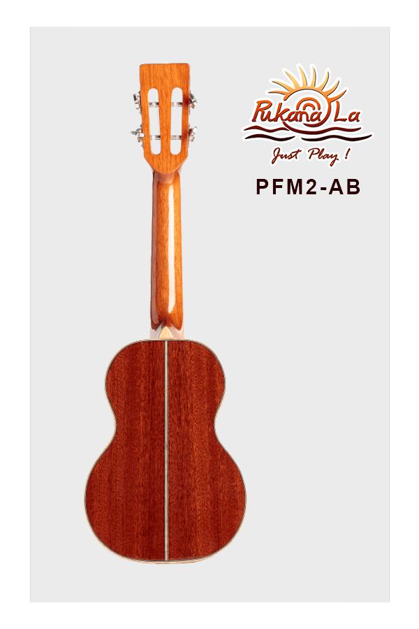 PFM2-AB-02