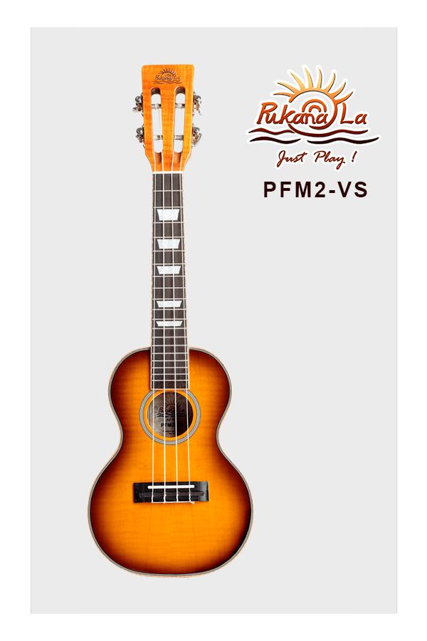 PFM2-VS-01