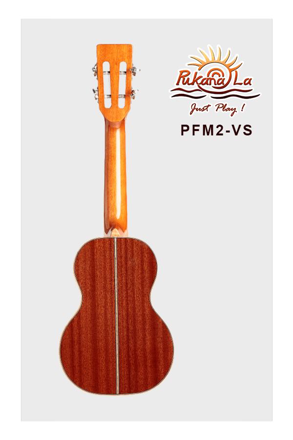 PFM2-VS-02