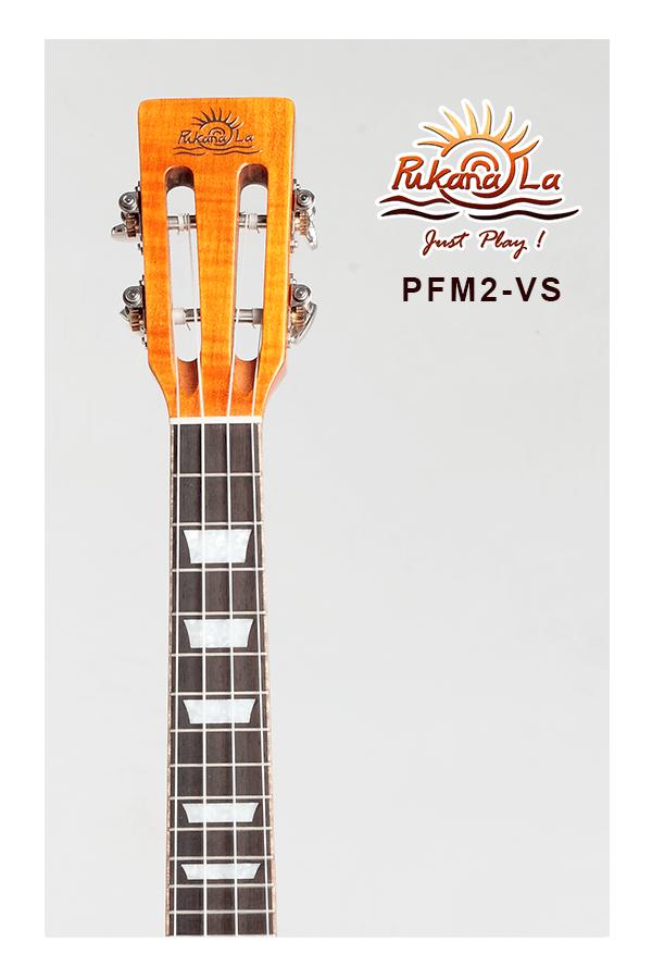 PFM2-VS-05