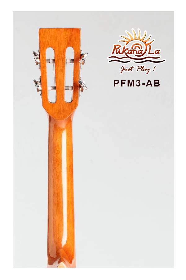 PFM3-AB-06