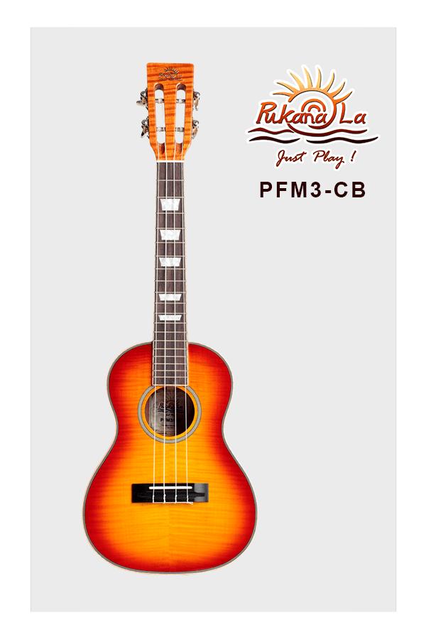 PFM3-CB-01