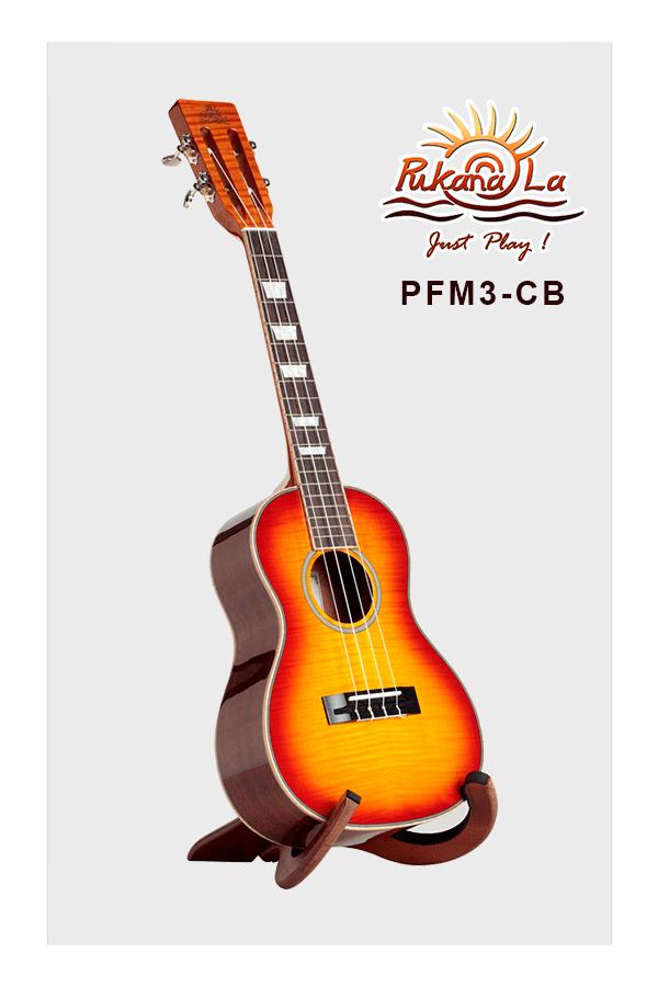PFM3-CB-03