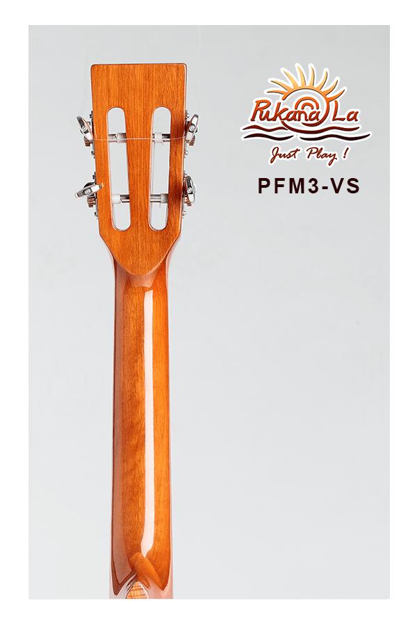 PFM3-VS-06