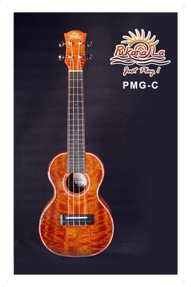 PMG-C-01