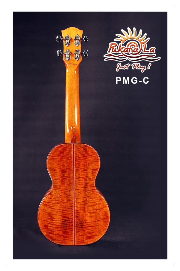 PMG-C-02