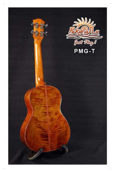 PMG-T-04