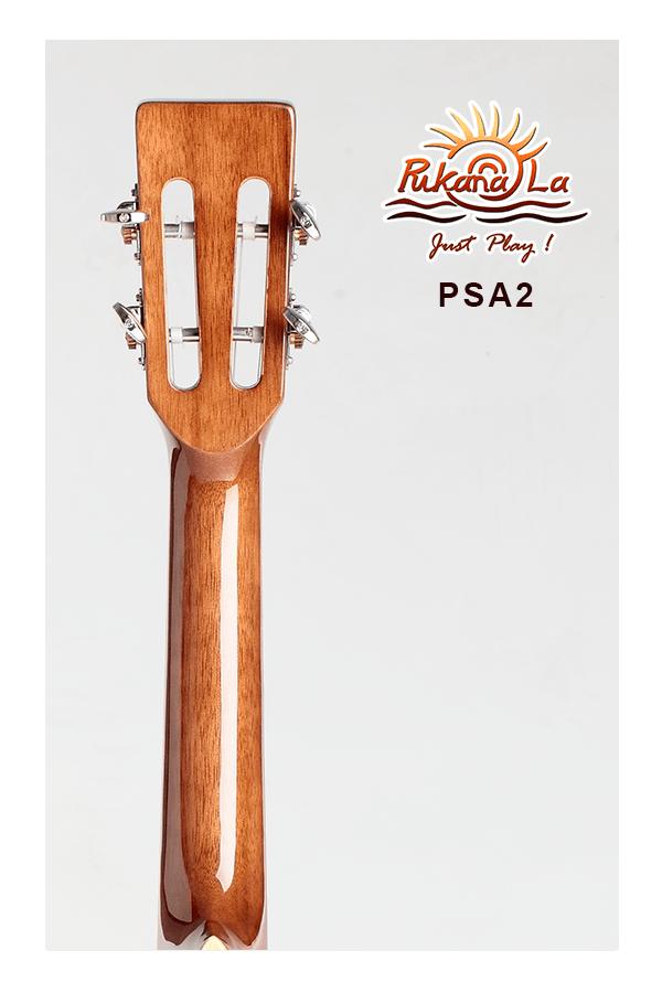 PSA2-06