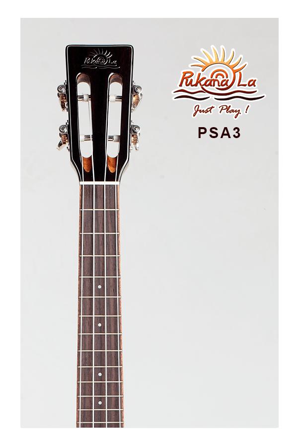 PSA3-05