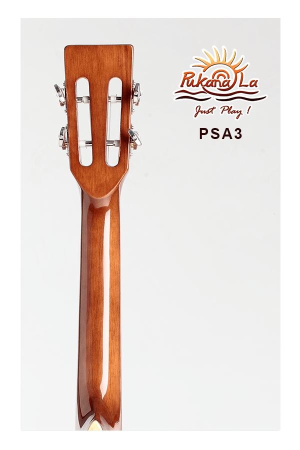 PSA3-06