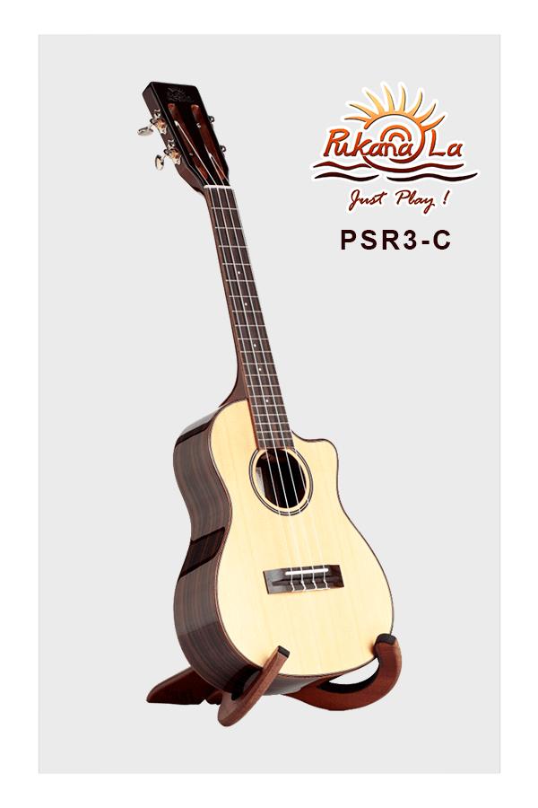 PSR3-C-03