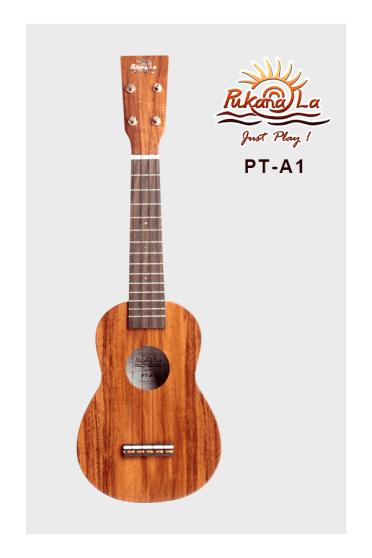 PT-A1-01