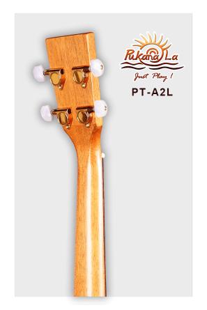 PT-A2L-06