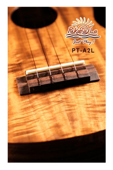 PT-A2L-07