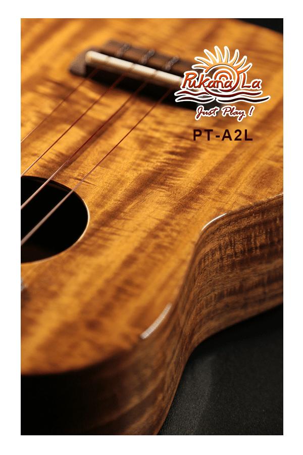 PT-A2L-09