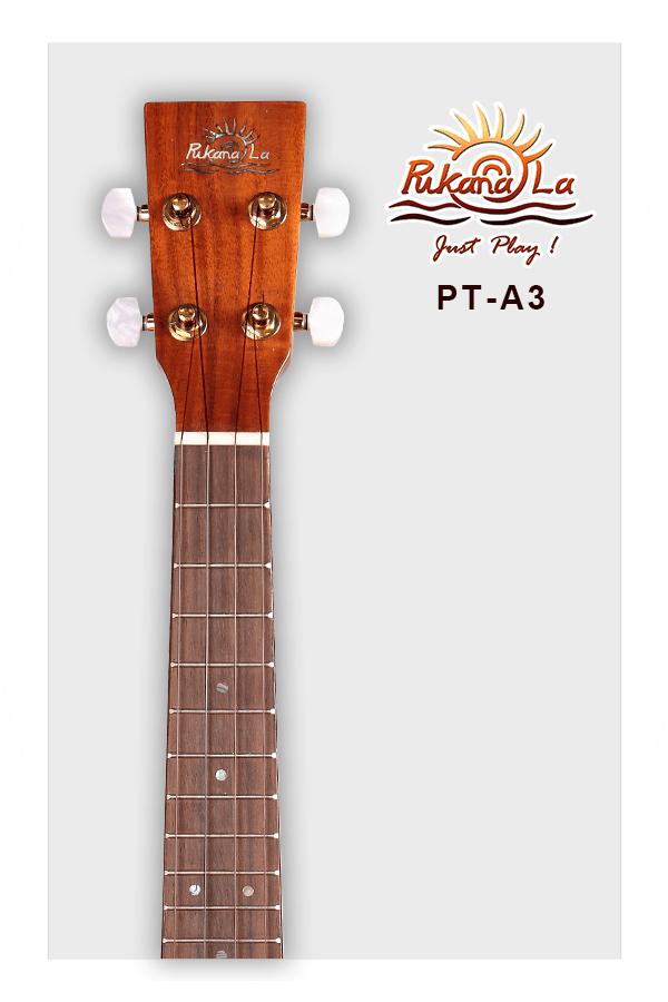 PT-A3-05