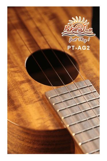 PT-AG2-08