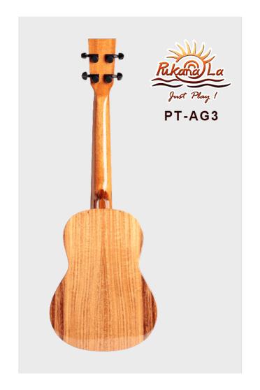 PT-AG3-02