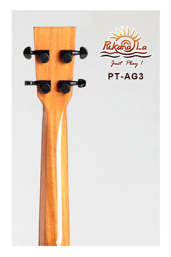 PT-AG3-06