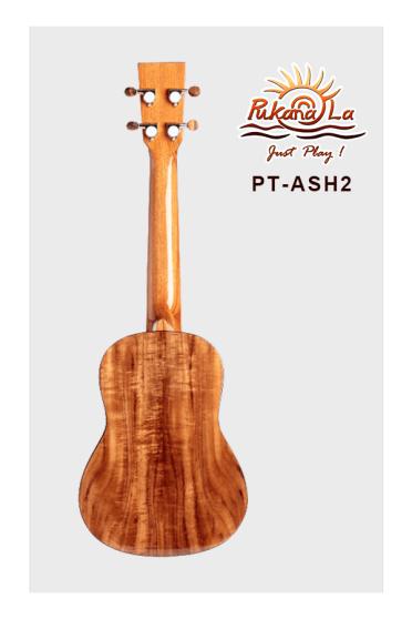 PT-ASH2-02