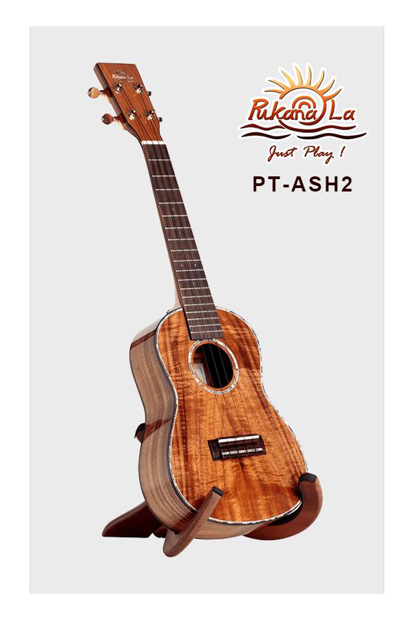 PT-ASH2-03