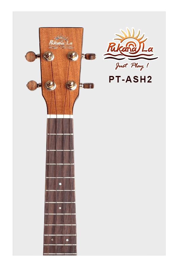 PT-ASH2-05