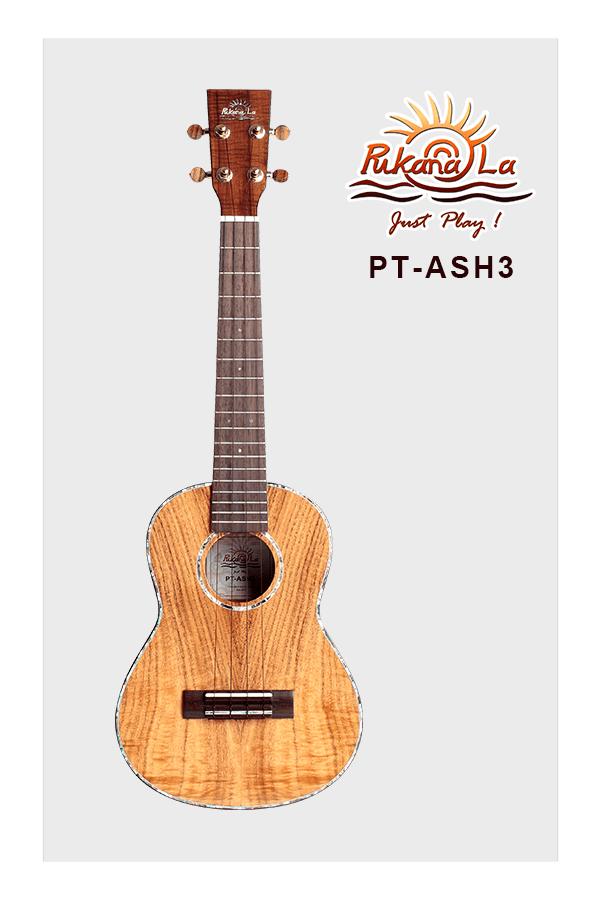 PT-ASH3-01