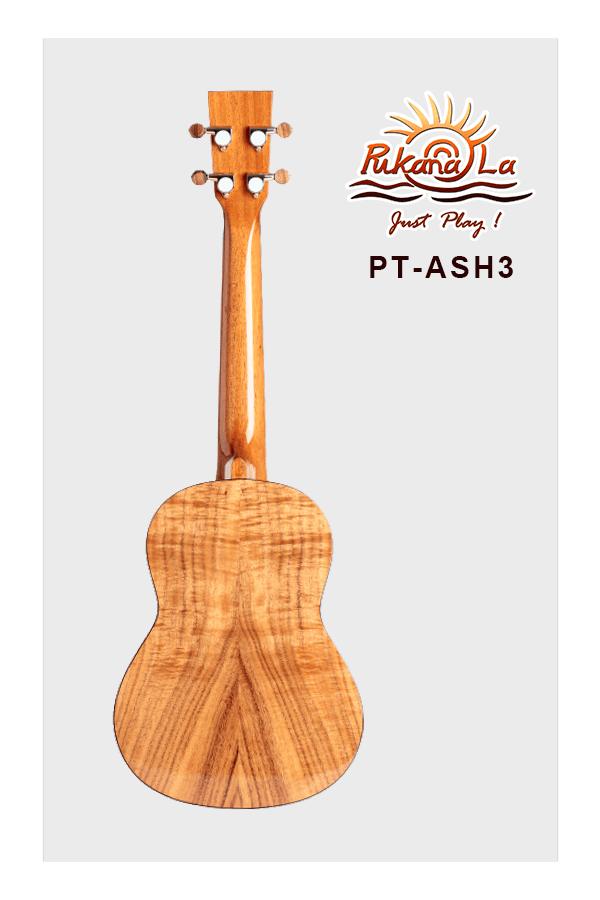 PT-ASH3-02