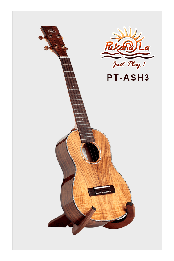 PT-ASH3-03