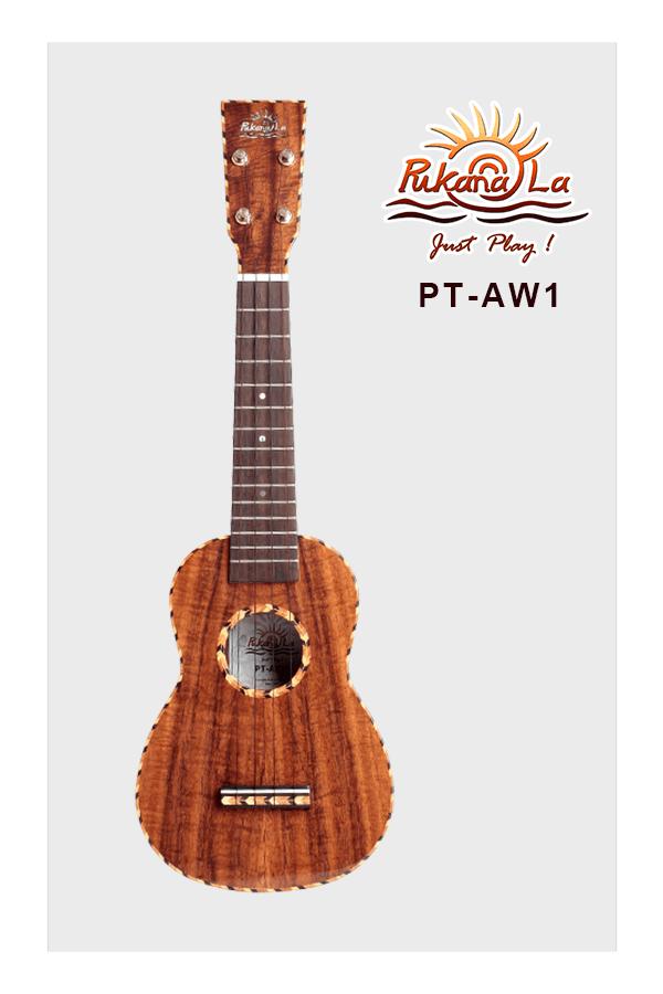 PT-AW1-01