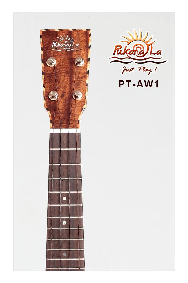 PT-AW1-05