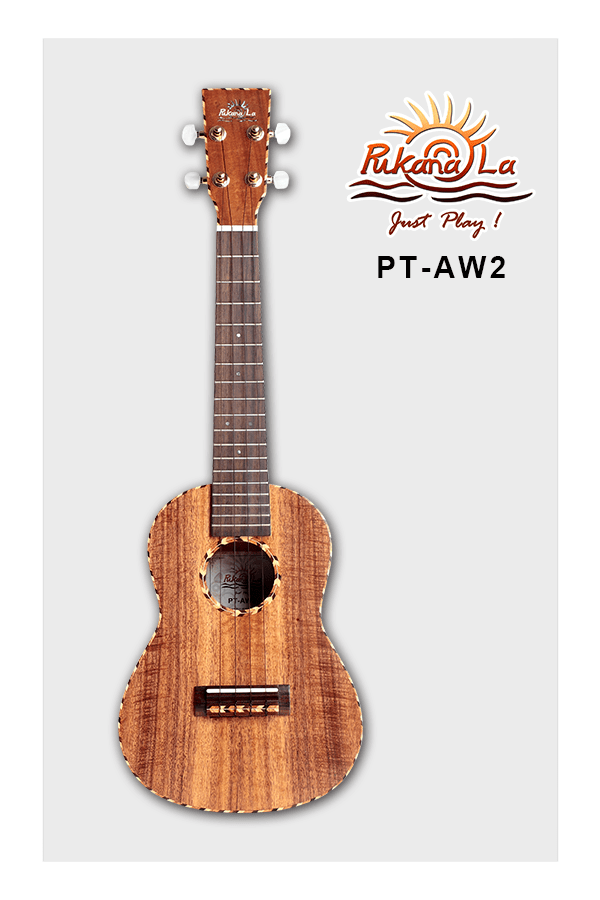 PT-AW2-01